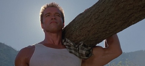 Blog Feature, Tough Guy Carrying Tree