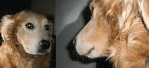 Self-Awareness - Safety's Best Friend, Blog Feature